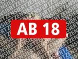 Amateurvideo Geblasen und von Hinten gefickt from crazydesire86