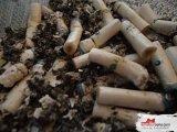 Amateurvideo Beobachten Sie meinen Aschenbecher, wie voll Zigaretten ist. von JulianaDoll