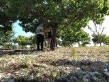 Amateurvideo Shibari-Session mit Wilco - TEIL 1 von ProfeHera