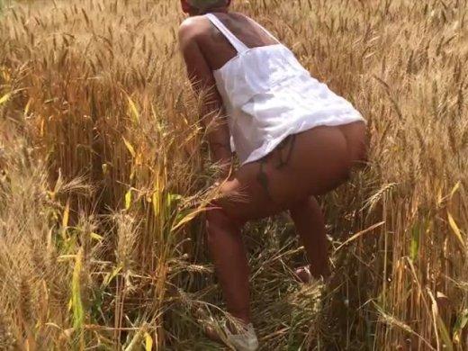 Ein Piss ins Kornfeld